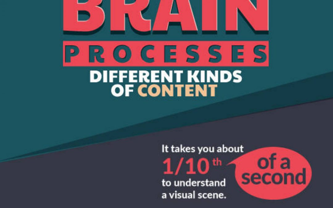 How Our Brain Processes Different Kinds of Content [Infographic]