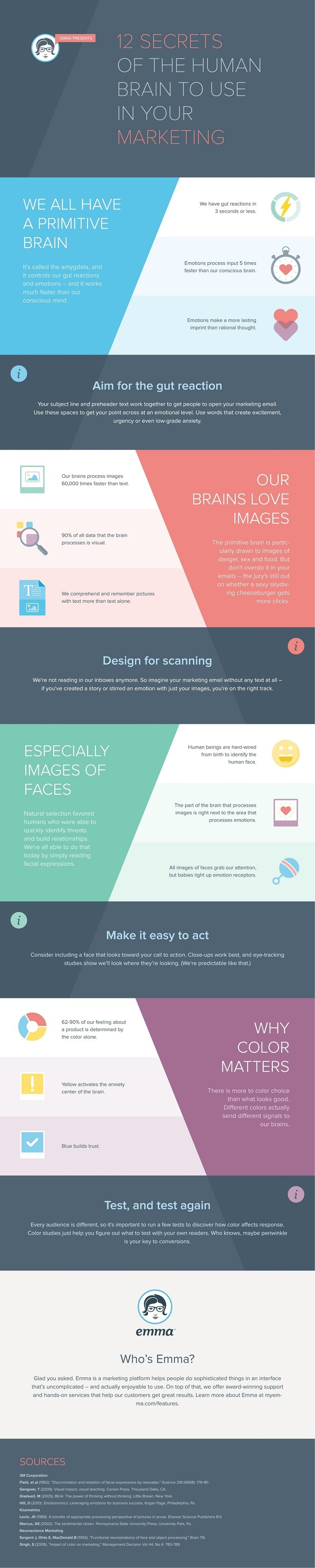 Infographic 12 Secrets of the Human Brain to Use in Your Marketing