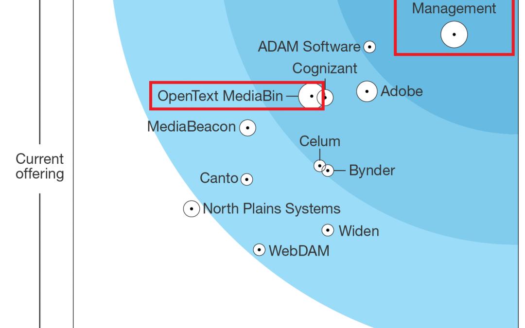 OpenText Media Management named again Leader