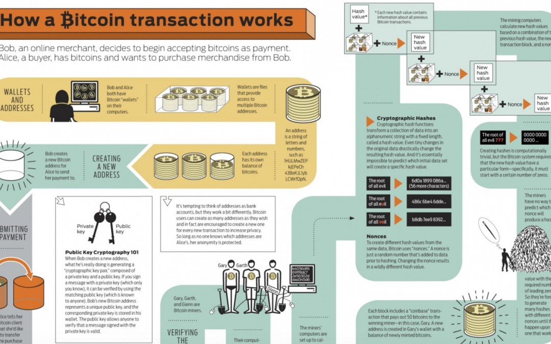 How Bitcoin Transaction Work [Infographic]