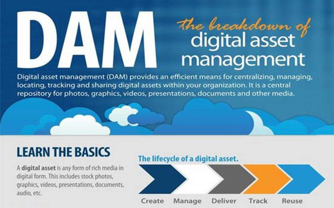 The Breakdown of Digital Asset Management ROI [Infographic]