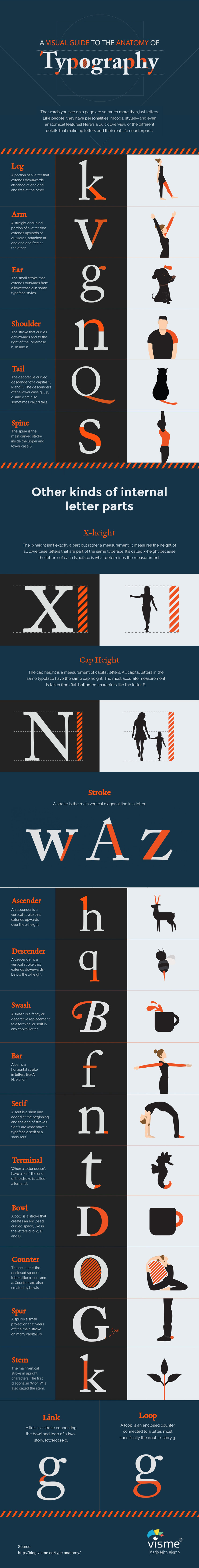 A Visual Guide to the Anatomy of Typography