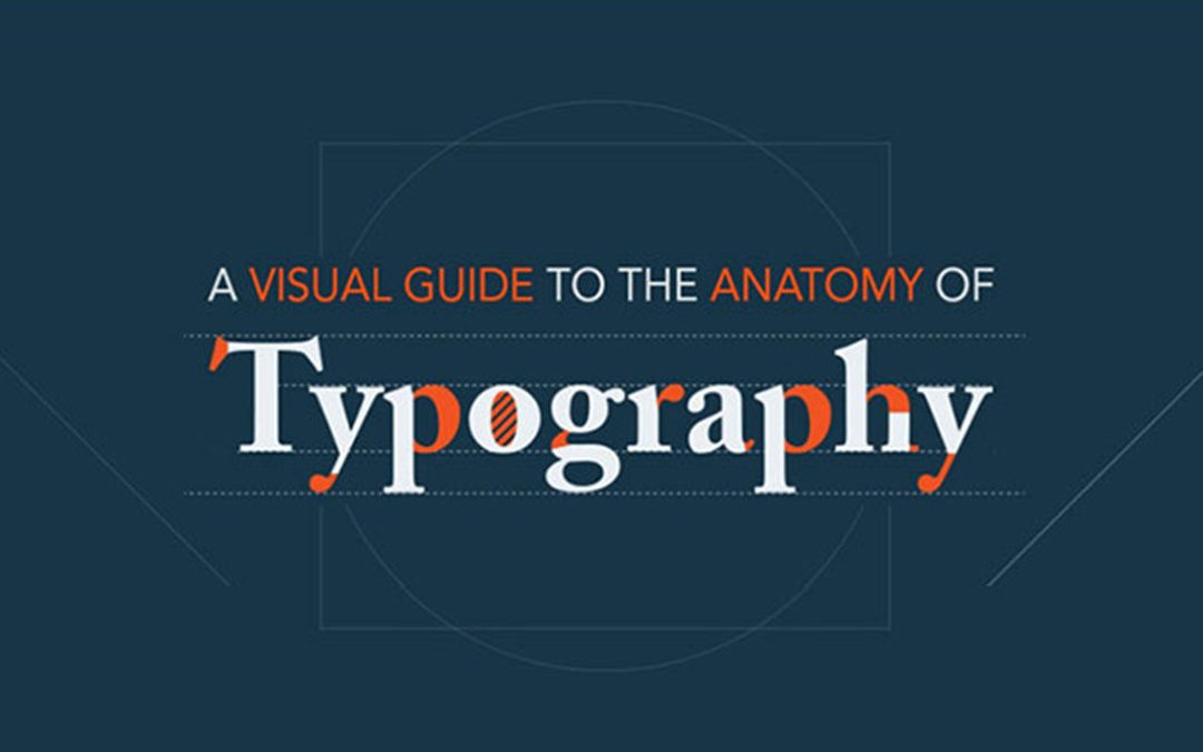 A Visual Guide to the Anatomy of Typography [Infographic]