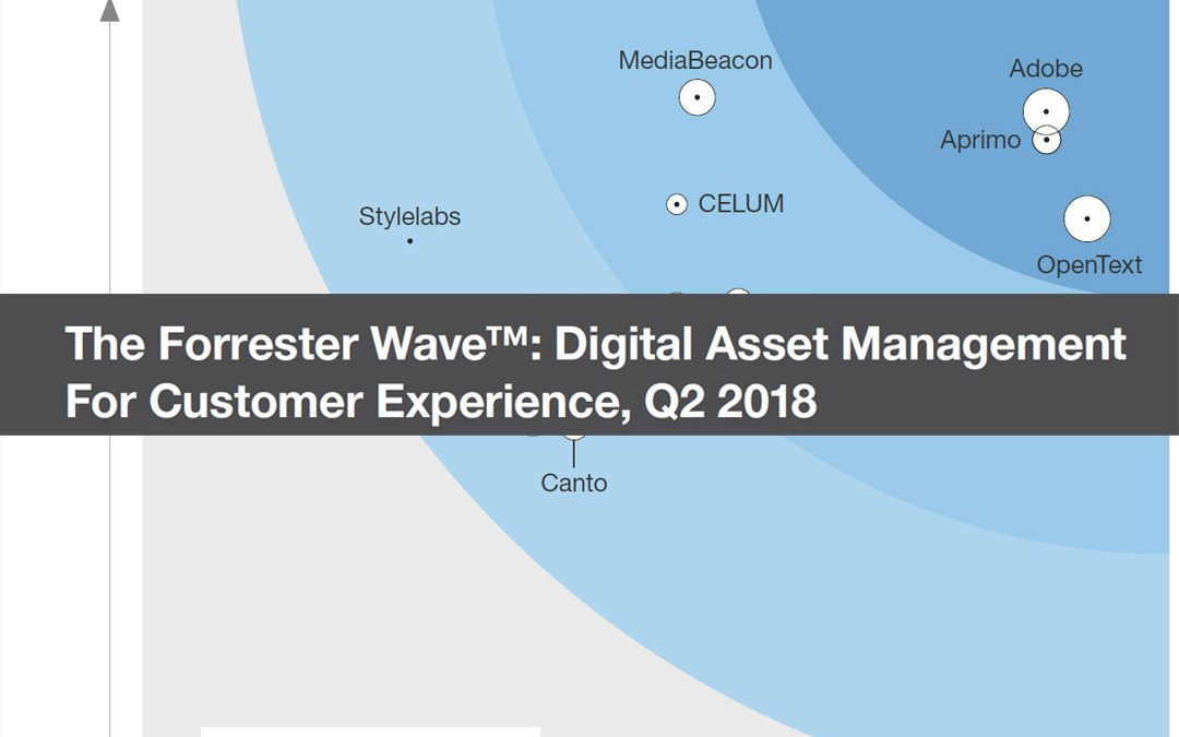The Forrester Wave: Digital Asset Management For Customer Experience, Q2 2018