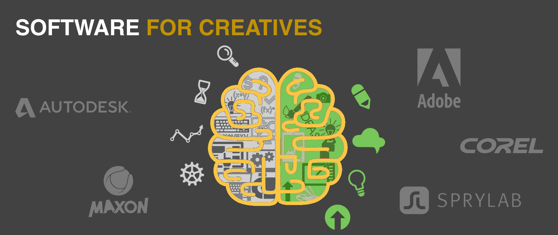 Creative Software offered by Skillz Middle East