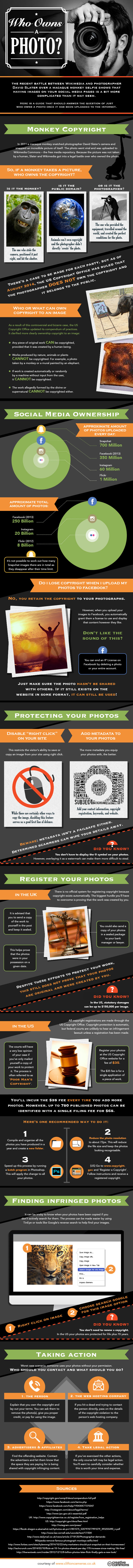 Who has the Photo Copyright and Ownership [Infographic]