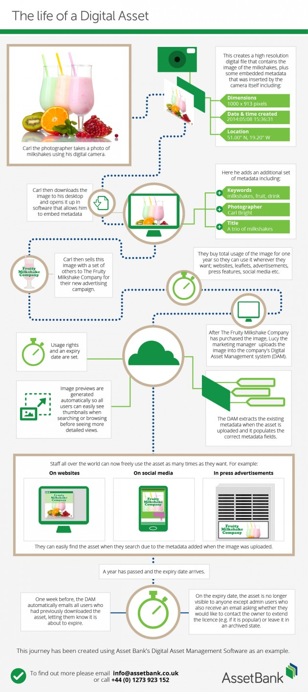 The Life of a Digital Asset [Infographic]