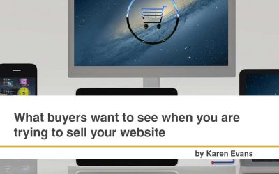 What Buyers want to See when you are Trying to Sell Your Website
