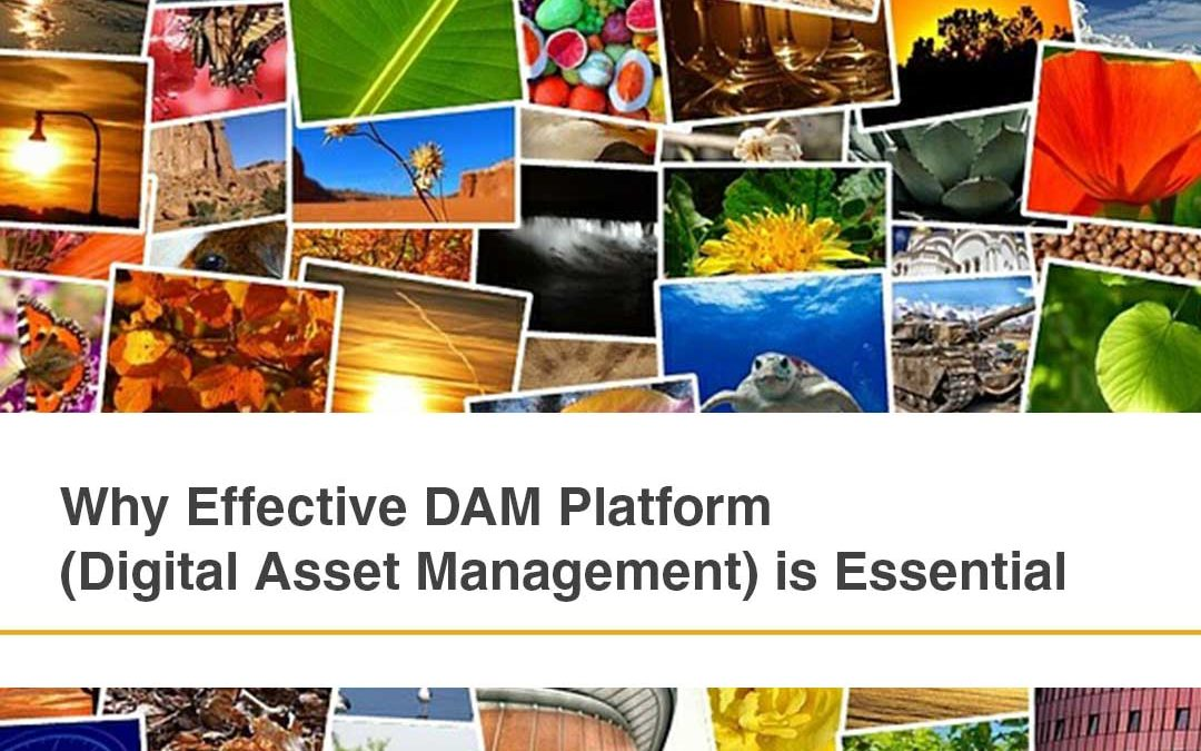 Why Effective DAM Platform (Digital Asset Management) is Essential