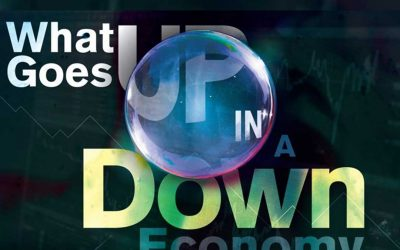 What Goes Up in a Down Economy? [Infographic]