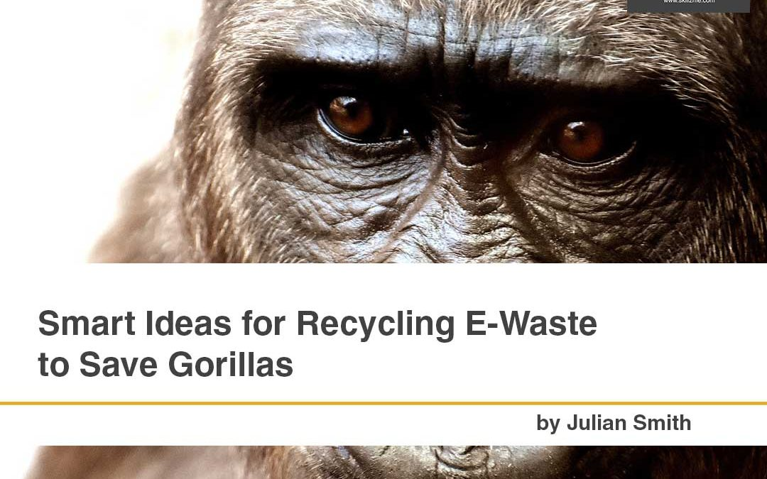 Smart Ideas for Recycling E-Waste to Save Gorillas